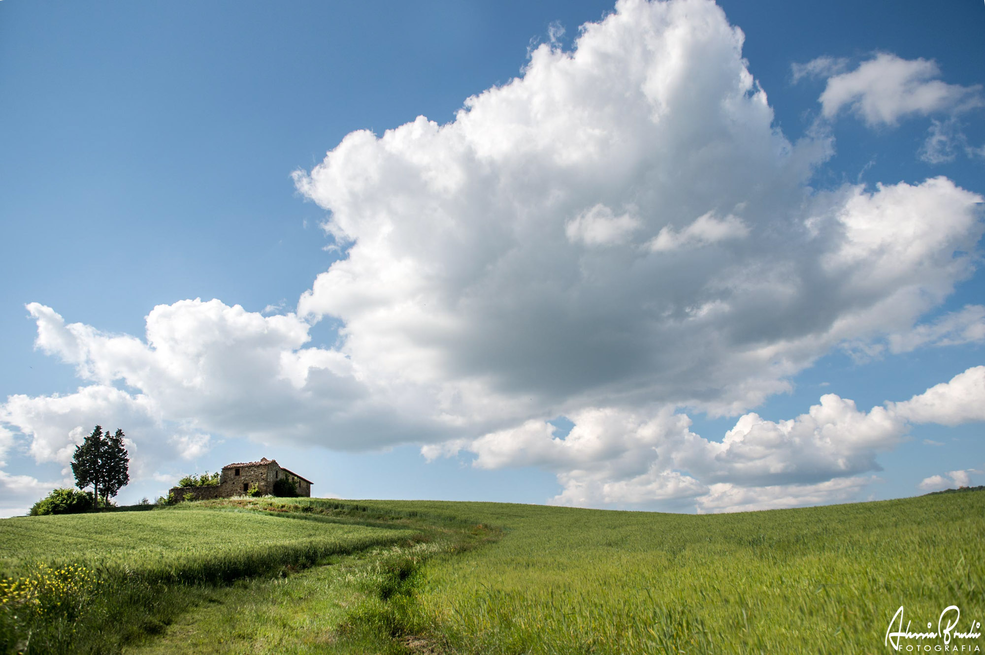 Alessia Bruchi Fotografia - tuscan landscapes photographer. The most beautiful tuscan lanscapes photographer