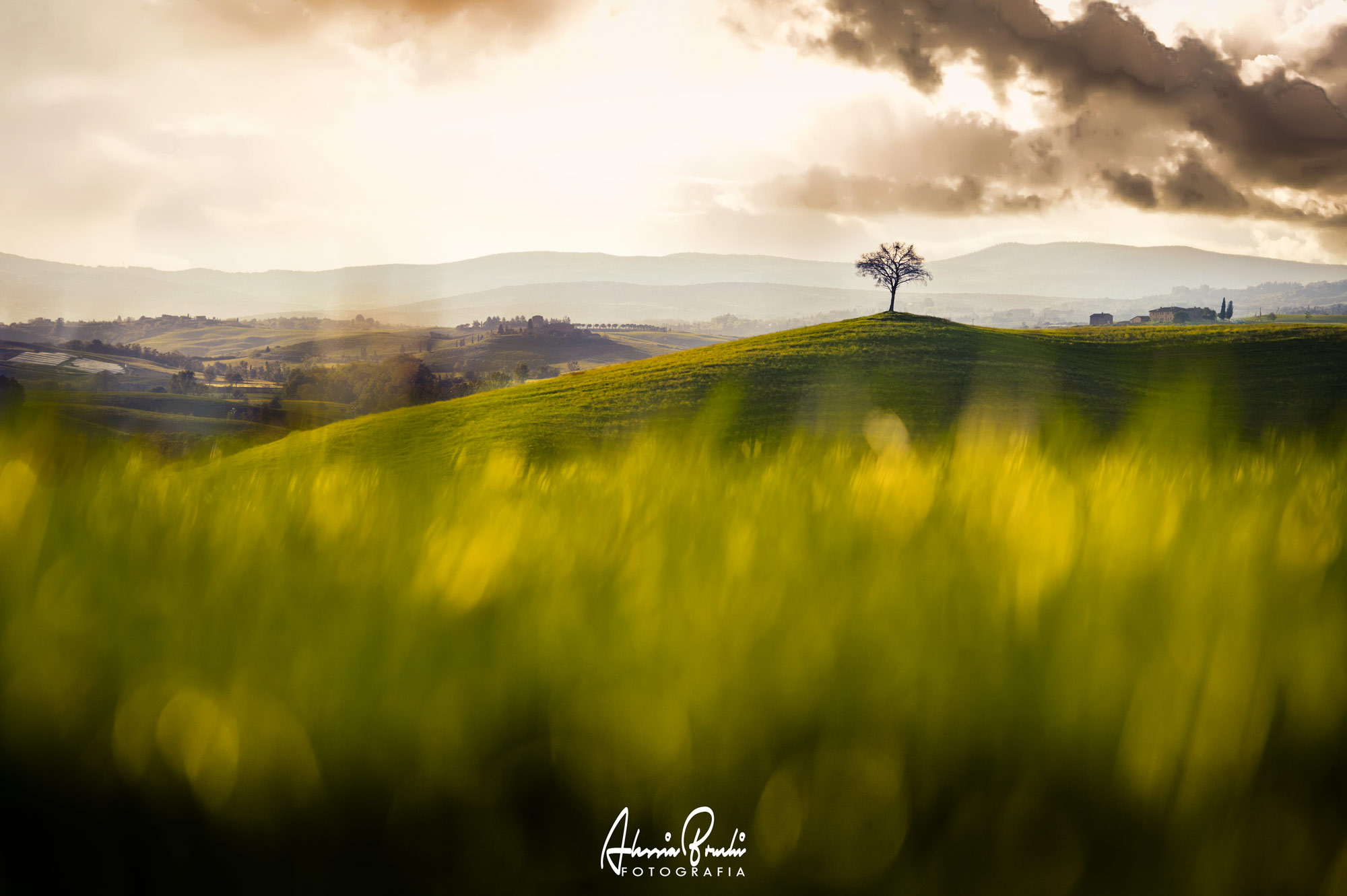 lanscapes photographer in tuscany