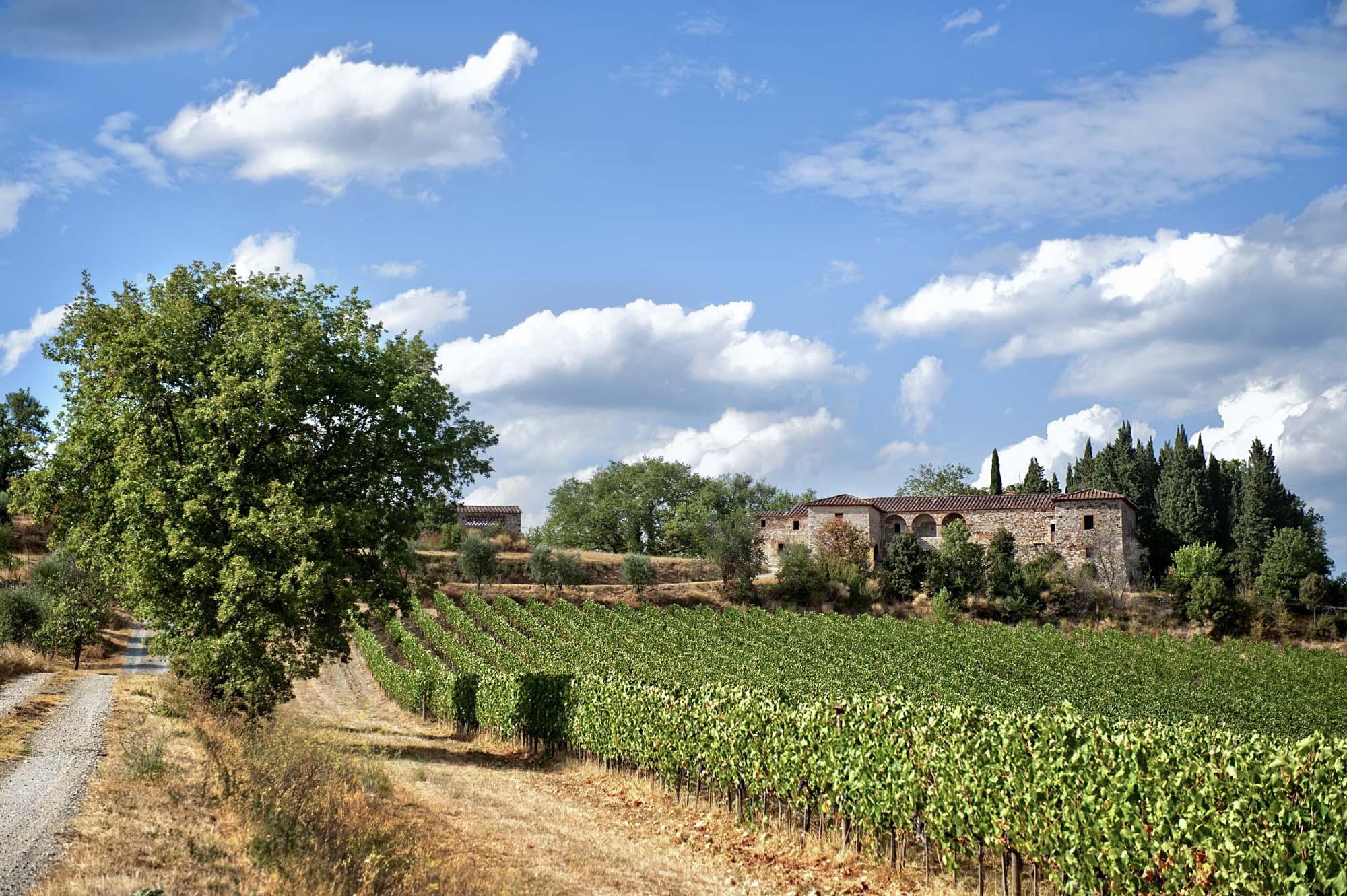 Wine Photography, Fotografia aziendale per Aziende Vitivinicole, Agriturismi e Relais